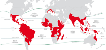 Les régions à risque de la Dengue