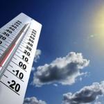 Réchauffement climatique et moustique